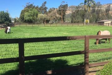 facility_photo3